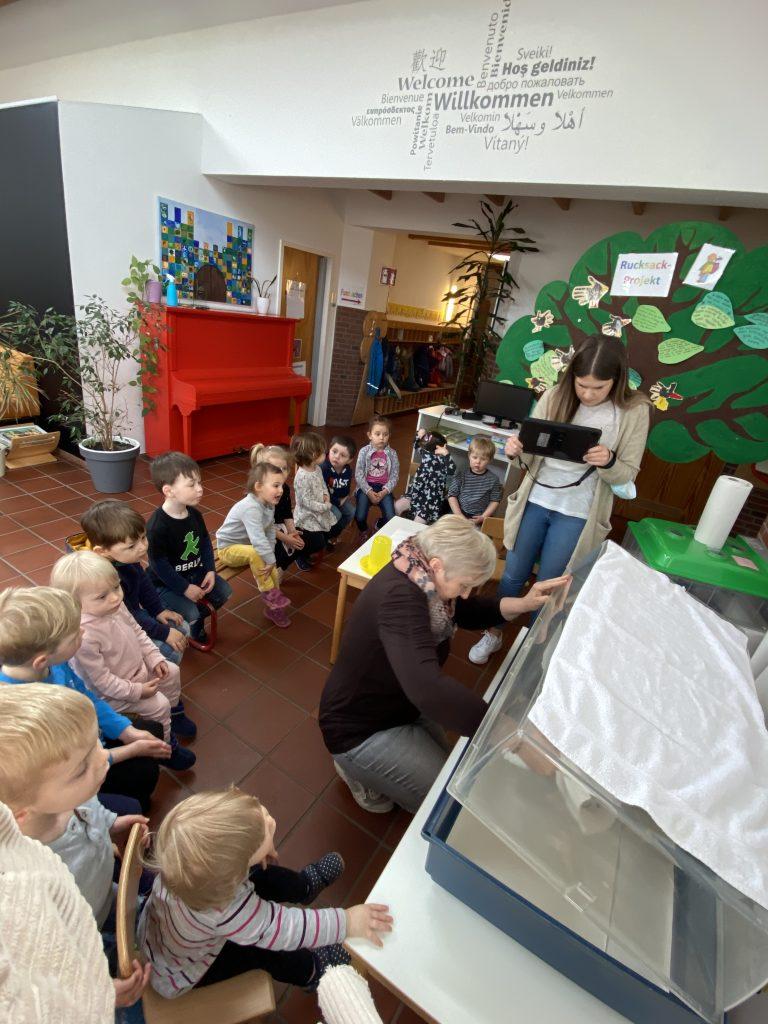 Kükenprojekt in der AWO Kita Geilenkirchen-Mitte 3
