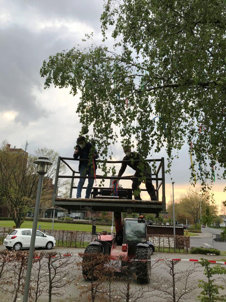 Ein Maibaum für das AWO-Altenzentrum Heinsberg 3