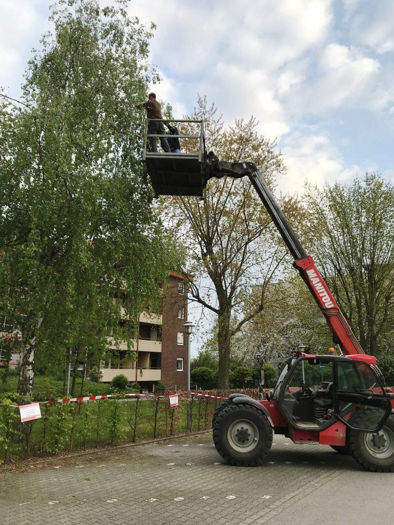 Ein Maibaum für das AWO-Altenzentrum Heinsberg 2