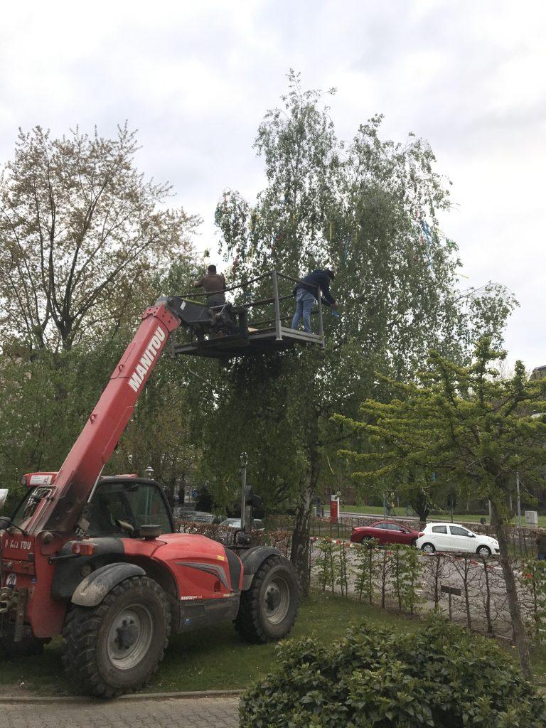 Ein Maibaum für das AWO-Altenzentrum Heinsberg 4